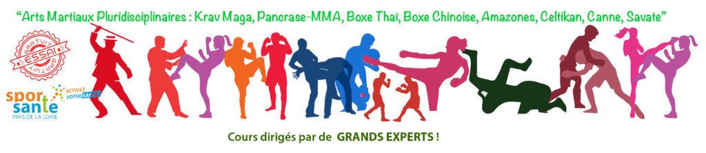 arts martiaux mixed, 44, Loire Atlantique, St Nazaire, La Turballe,St Brévin, Mesquer